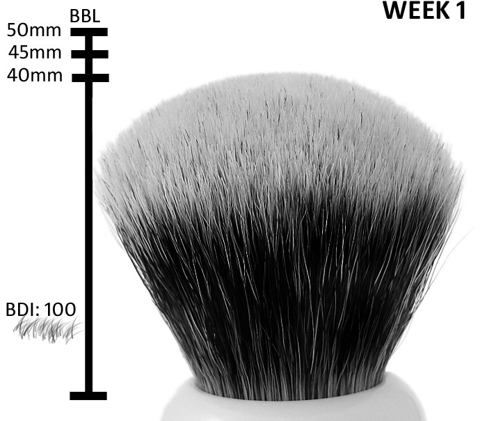 brush week1 Worlds first living shaving brush!
