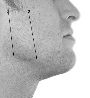 Straight razor / cut-throat razor example shaving path
